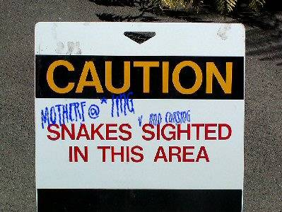 Snakes and Cursing Ahead!