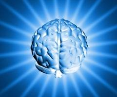 1254880_shiny_brain_