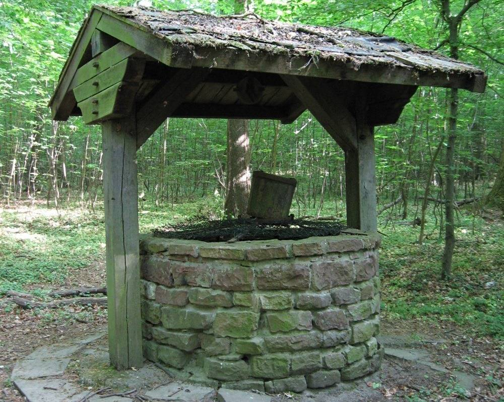 old-draw-well-in-forest